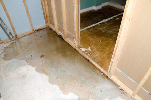 sewage damage orange county ny, sewage damage cleanup orange county