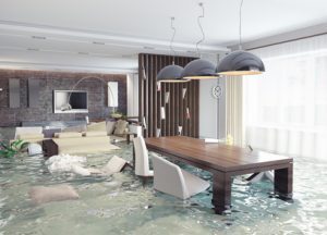 water damage cleanup warwick, water damage repair warwick